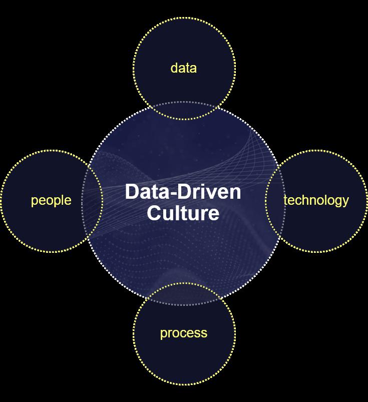 Data driven culture